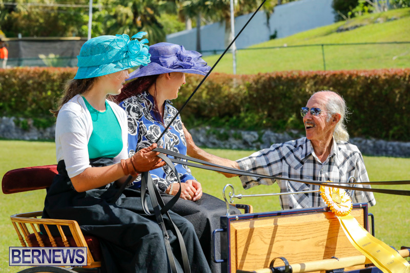 Ag-Show-at-Botanical-Gardens-Bermuda-April-21-2018-2519