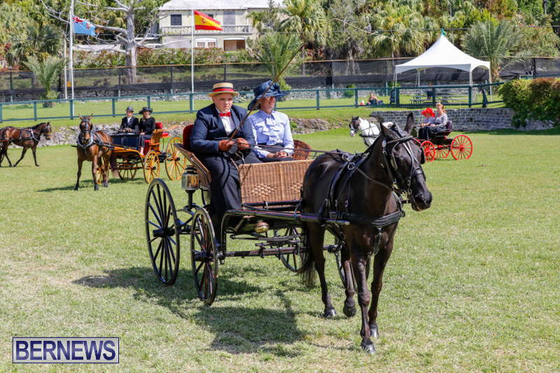 Ag-Show-at-Botanical-Gardens-Bermuda-April-21-2018-2521