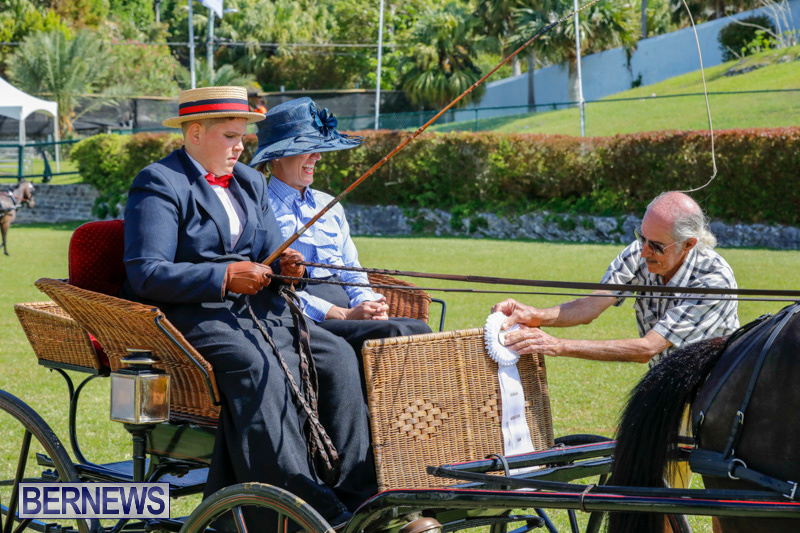 Ag-Show-at-Botanical-Gardens-Bermuda-April-21-2018-2525