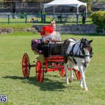Ag Show at Botanical Gardens Bermuda, April 21 2018-2536