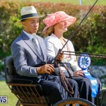 Ag Show at Botanical Gardens Bermuda, April 21 2018-2557