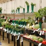 Agricultural Show Bermuda Day 1, April 19 2018 (1)