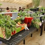 Agricultural Show Bermuda Day 1, April 19 2018 (12)