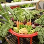 Agricultural Show Bermuda Day 1, April 19 2018 (15)