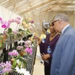 Agricultural Show Bermuda Day 1, April 19 2018 (31)
