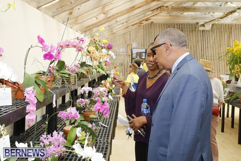 Agricultural-Show-Bermuda-Day-1-April-19-2018-31
