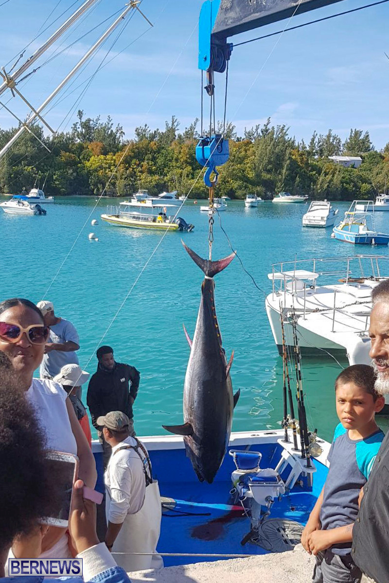 Bobby Lambe 431lb Pound Bluefin Tuna Bermuda, April 22 2018-2-4