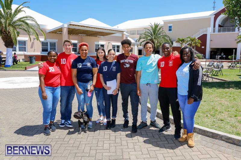 CedarBridge-Academy-Pet-Pageant-Bermuda-April-22-2018-6719