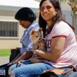 CedarBridge Academy Pet Pageant Bermuda, April 22 2018-6820