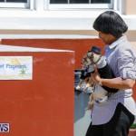CedarBridge Academy Pet Pageant Bermuda, April 22 2018-6932