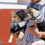 CedarBridge Academy Pet Pageant Bermuda, April 22 2018-6935