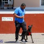 CedarBridge Academy Pet Pageant Bermuda, April 22 2018-6948
