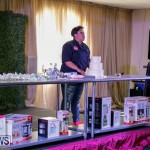 City Food Festival Just Desserts, Cake Edition Bermuda, April 15 2018-1496