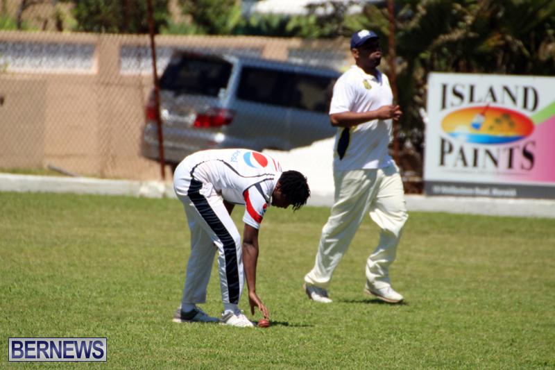 Cricket-Bermuda-April-25-2018-8