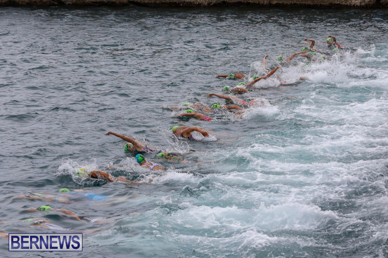 Elite-Women-MS-Amlin-ITU-World-Triathlon-Bermuda-April-28-2018-1661