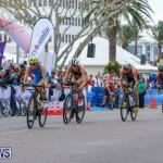 Elite Women MS Amlin ITU World Triathlon Bermuda, April 28 2018-2009