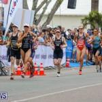 Elite Women MS Amlin ITU World Triathlon Bermuda, April 28 2018-2449
