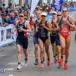 Elite Women MS Amlin ITU World Triathlon Bermuda, April 28 2018-2644