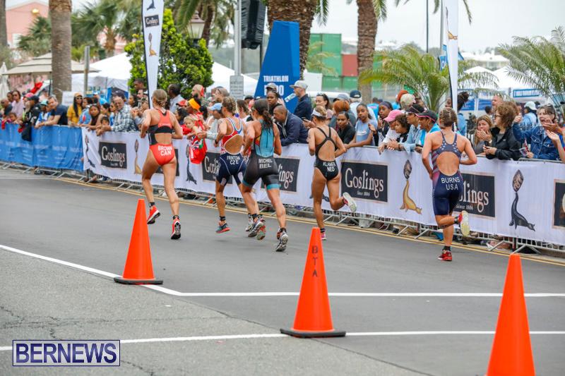 Elite-Women-MS-Amlin-ITU-World-Triathlon-Bermuda-April-28-2018-2698