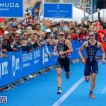 Elite Women MS Amlin ITU World Triathlon Bermuda, April 28 2018-2935