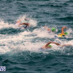 MS Amlin ITU World Triathlon Bermuda, April 28 2018 (179)