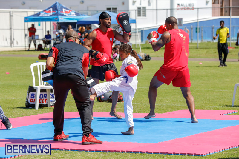 Youth-Sports-Expo-At-National-Sports-Centre-Bermuda-April-15-2018-1419