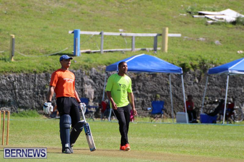cricket-Bermuda-April-18-2018-17
