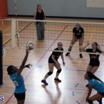 volleyball Bermuda April 25 2018 (10)