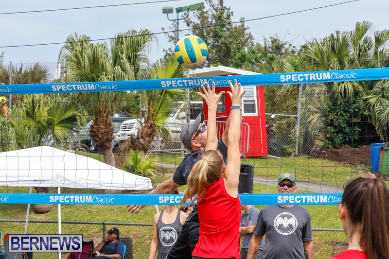 26th-Annual-Corporate-Volleyball-Tournament-Bermuda-May-12-2018-2860
