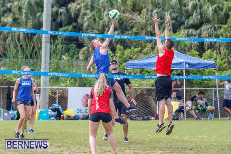 26th-Annual-Corporate-Volleyball-Tournament-Bermuda-May-12-2018-2875