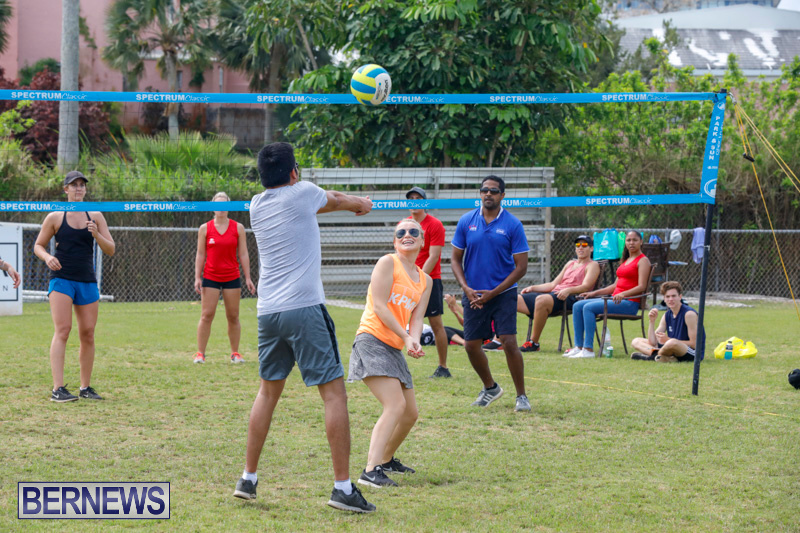 26th-Annual-Corporate-Volleyball-Tournament-Bermuda-May-12-2018-2884