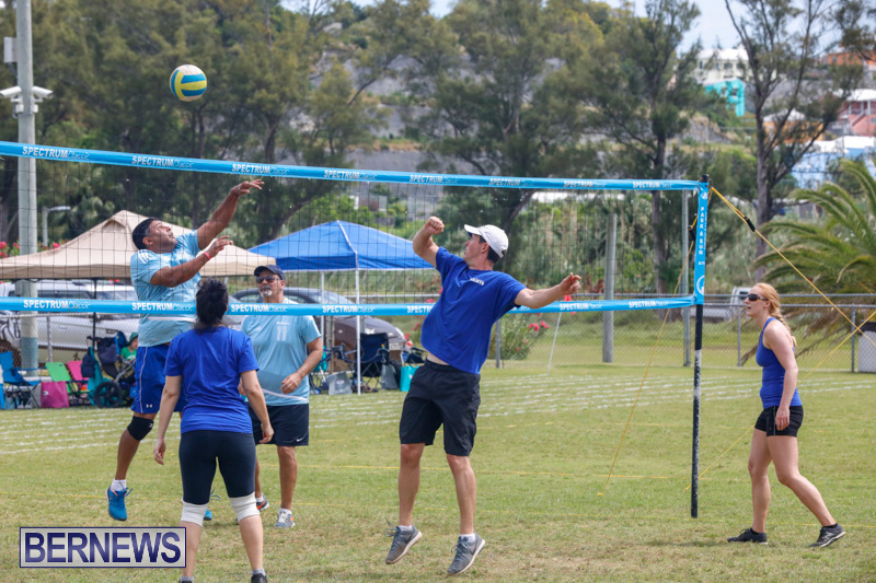 26th-Annual-Corporate-Volleyball-Tournament-Bermuda-May-12-2018-2895