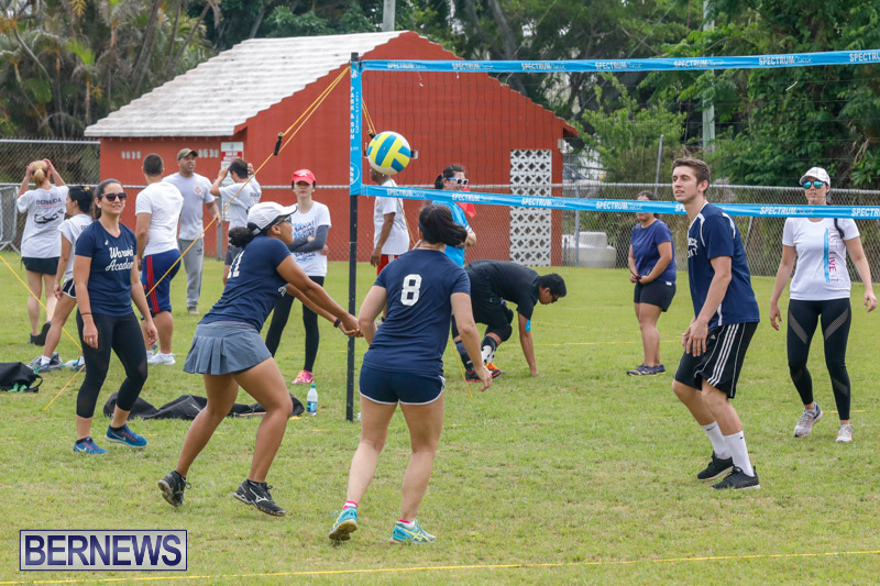 26th-Annual-Corporate-Volleyball-Tournament-Bermuda-May-12-2018-2906