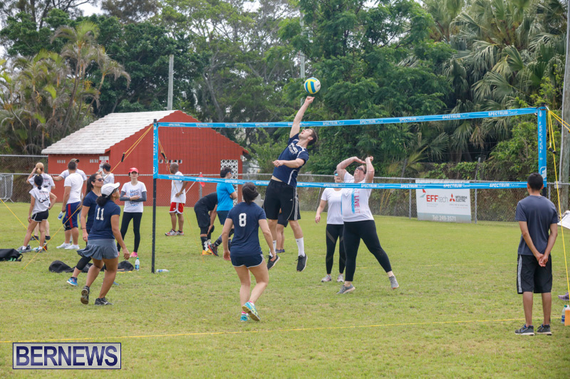26th-Annual-Corporate-Volleyball-Tournament-Bermuda-May-12-2018-2909