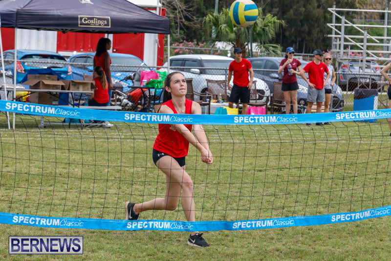 26th-Annual-Corporate-Volleyball-Tournament-Bermuda-May-12-2018-2977