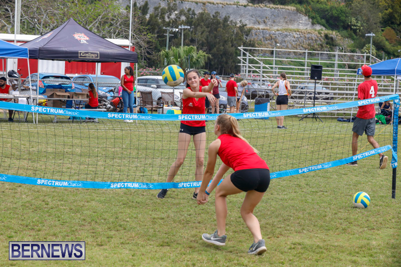26th-Annual-Corporate-Volleyball-Tournament-Bermuda-May-12-2018-2981