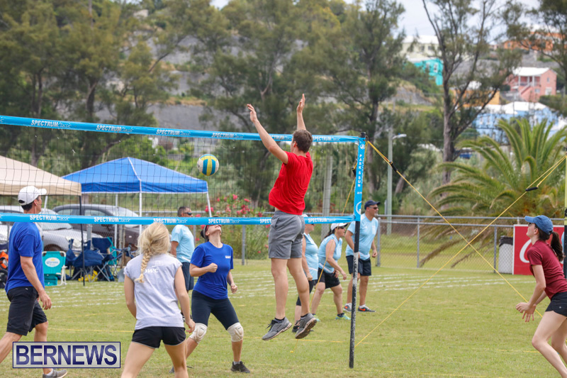 26th-Annual-Corporate-Volleyball-Tournament-Bermuda-May-12-2018-3042
