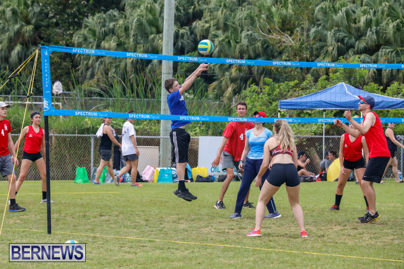 26th-Annual-Corporate-Volleyball-Tournament-Bermuda-May-12-2018-3061