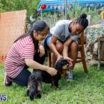 6th Annual Kaleidoscopic Jamboree Bermuda, May 12 2018-3092