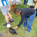 6th Annual Kaleidoscopic Jamboree Bermuda, May 12 2018-3097