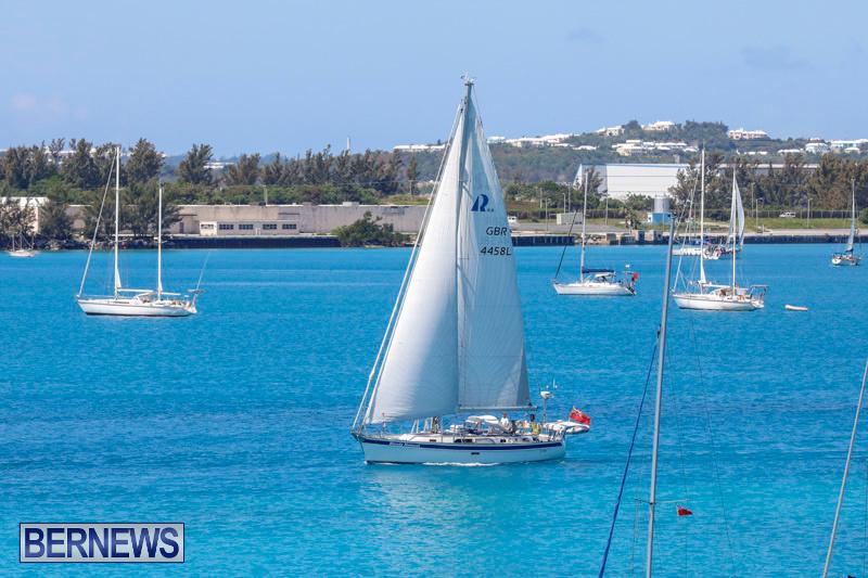 ARC-Europe-Sailing-Rally-Bermuda-May-16-2018-5010
