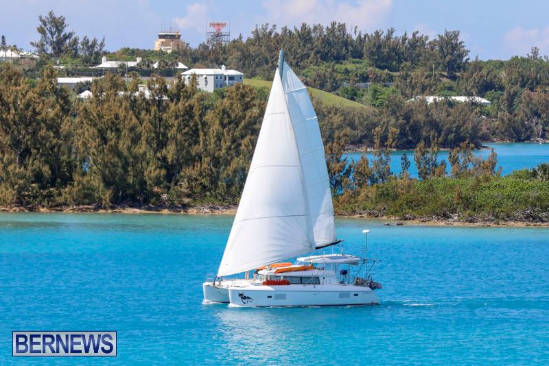 ARC-Europe-Sailing-Rally-Bermuda-May-16-2018-5023