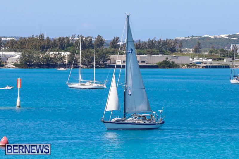 ARC-Europe-Sailing-Rally-Bermuda-May-16-2018-5032