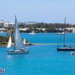 ARC Europe Sailing Rally Bermuda, May 16 2018-5041
