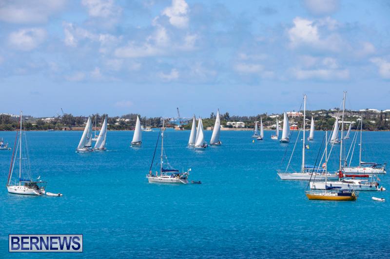 ARC-Europe-Sailing-Rally-Bermuda-May-16-2018-5061