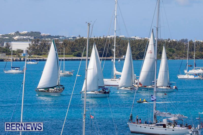 ARC-Europe-Sailing-Rally-Bermuda-May-16-2018-5069