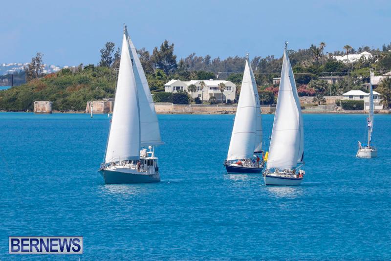 ARC-Europe-Sailing-Rally-Bermuda-May-16-2018-5071
