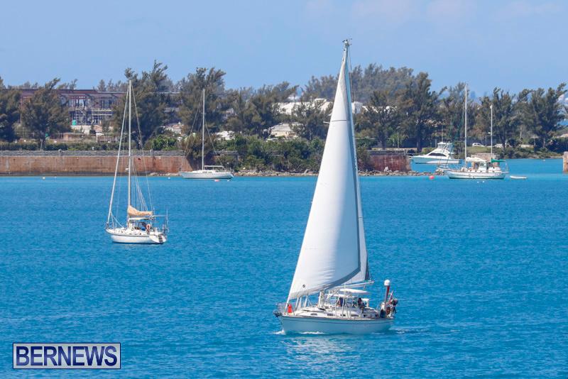 ARC-Europe-Sailing-Rally-Bermuda-May-16-2018-5074