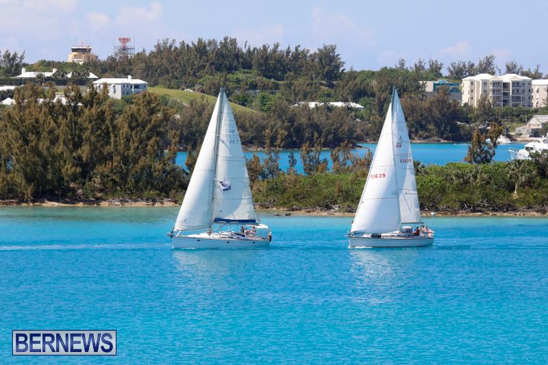 ARC-Europe-Sailing-Rally-Bermuda-May-16-2018-5077