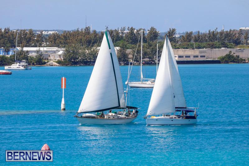 ARC-Europe-Sailing-Rally-Bermuda-May-16-2018-5079
